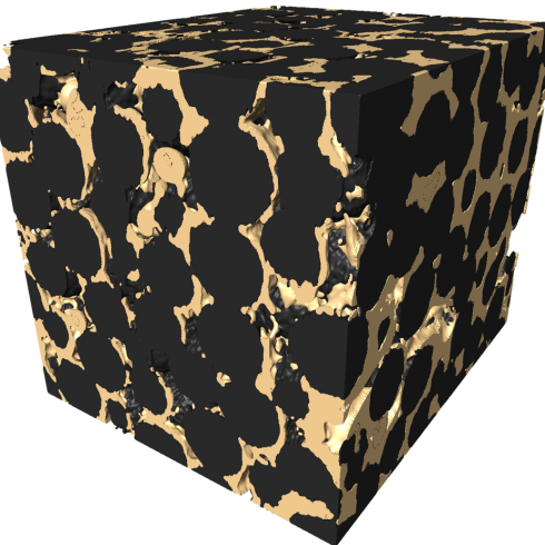 Biofilm (gold) growing in a solid porous structure (black).